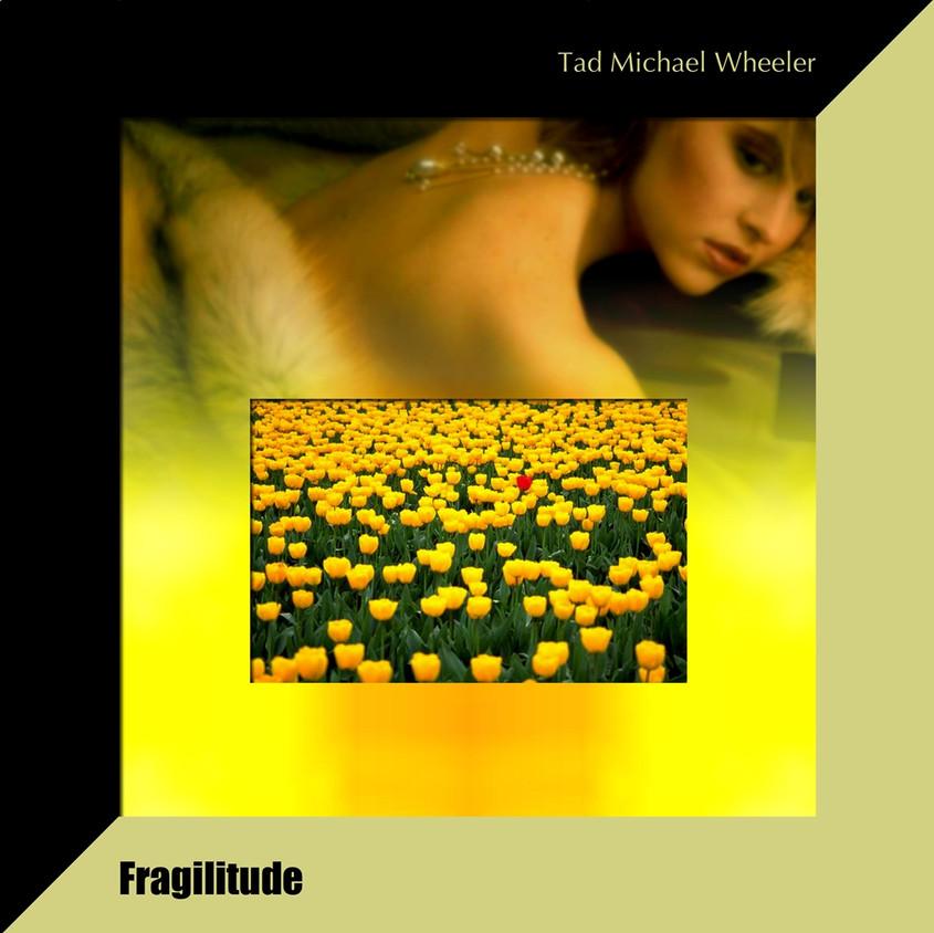 •Cue27_Fragilitude_copy.jpg