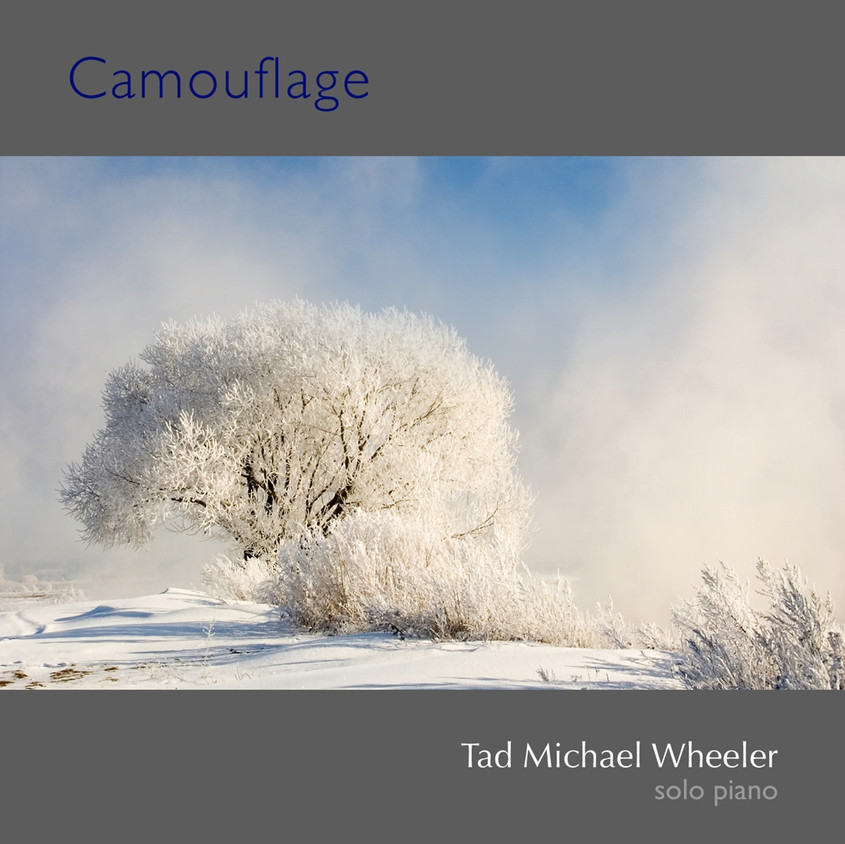 •SP23_Camouflage_CD_Cover_copy.jpg
