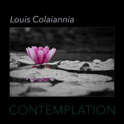 Louis Colaiannia: Contemplation