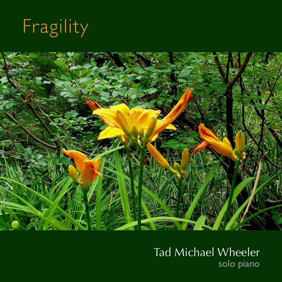 •SP07_Fragility_CD_Cover_copy.jpg