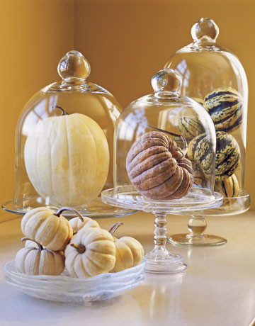 Gourd Display