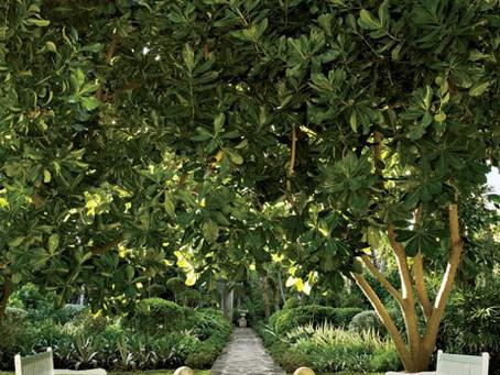 Look of the Day: Oscar de la Renta's  Punta Cana Gardens