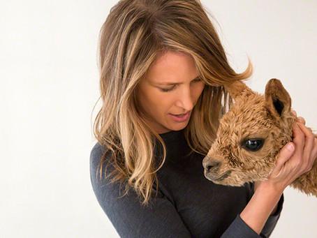 Artist Spotlight: Sharon Montrose & The Animal Print Shop