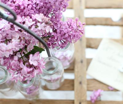 Colour Pop: Lilac