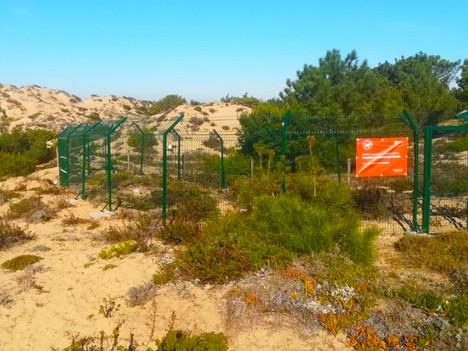 Parque de Recolha de cães assilvestrados.