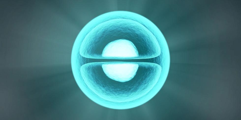 Le Pouvoir de nos bactéries intestinales