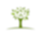 Logo arbre png Maison de l'auto-Guérison