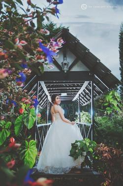Natural Cameron Highland Pre-wedding