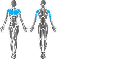 muscular-chest-press-2.jpg