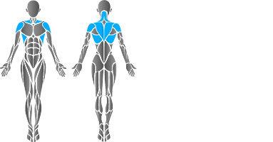 muscular-lat-pull-2.jpg