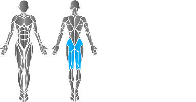 muscular-body-extension-2.jpg