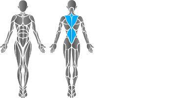 muscular-back-2.jpg
