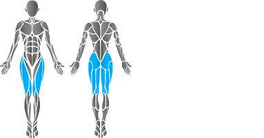 muscular-leg-press-2.jpg