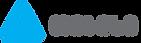 Logo-46 (1).png