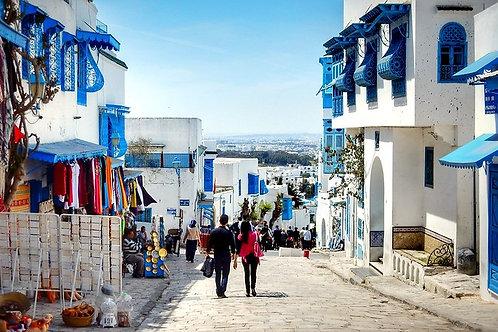 二月突尼西亞