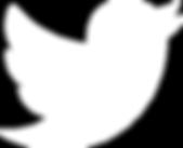 minervafalls_Twitter_logo_white.png