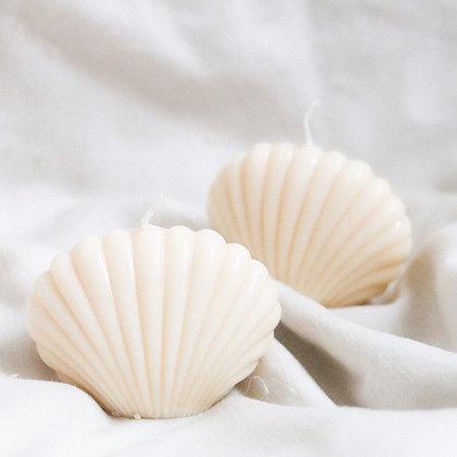 Waxed Shells