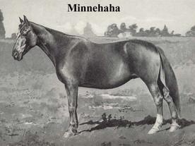 Minnehaha - grundmoder född 1868