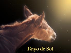Rayo de Sol - Solstrålen