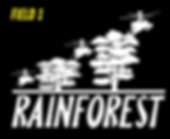rainforest.png