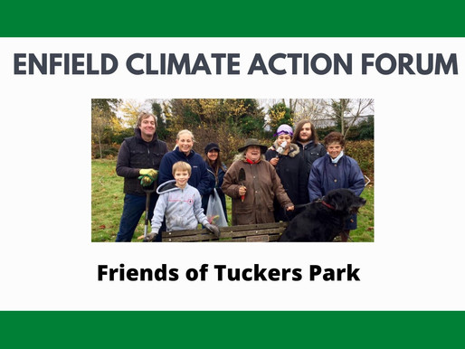 Friends of Tuckers Park