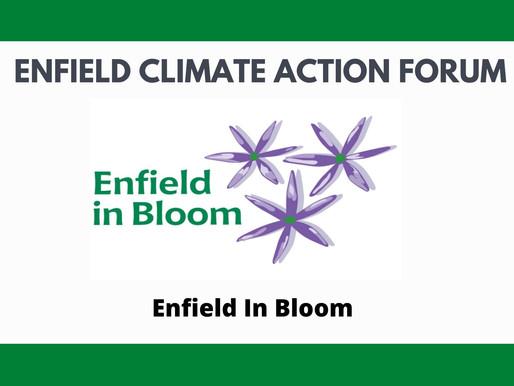 Enfield In Bloom