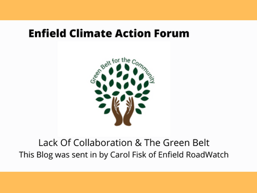Lack Of Collaboration & The Green Belt