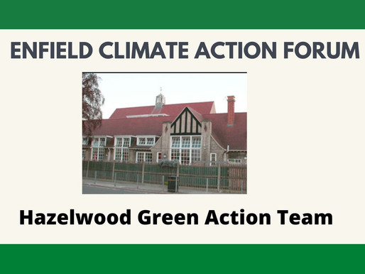 Hazelwood Green Action Team