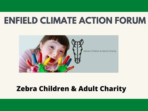 Zebra Children & Adult Charity