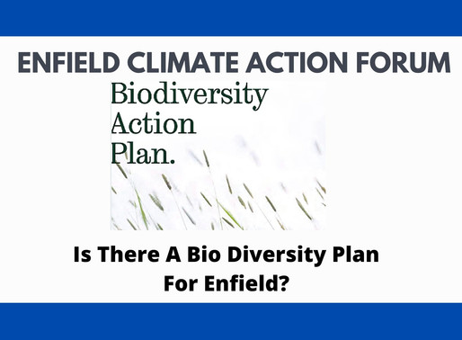 Is There A Bio Diversity Plan For Enfield?