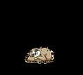 LOGO_ZENFOODS_FINAL-01.png