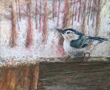 Wildlife bird pastel painting