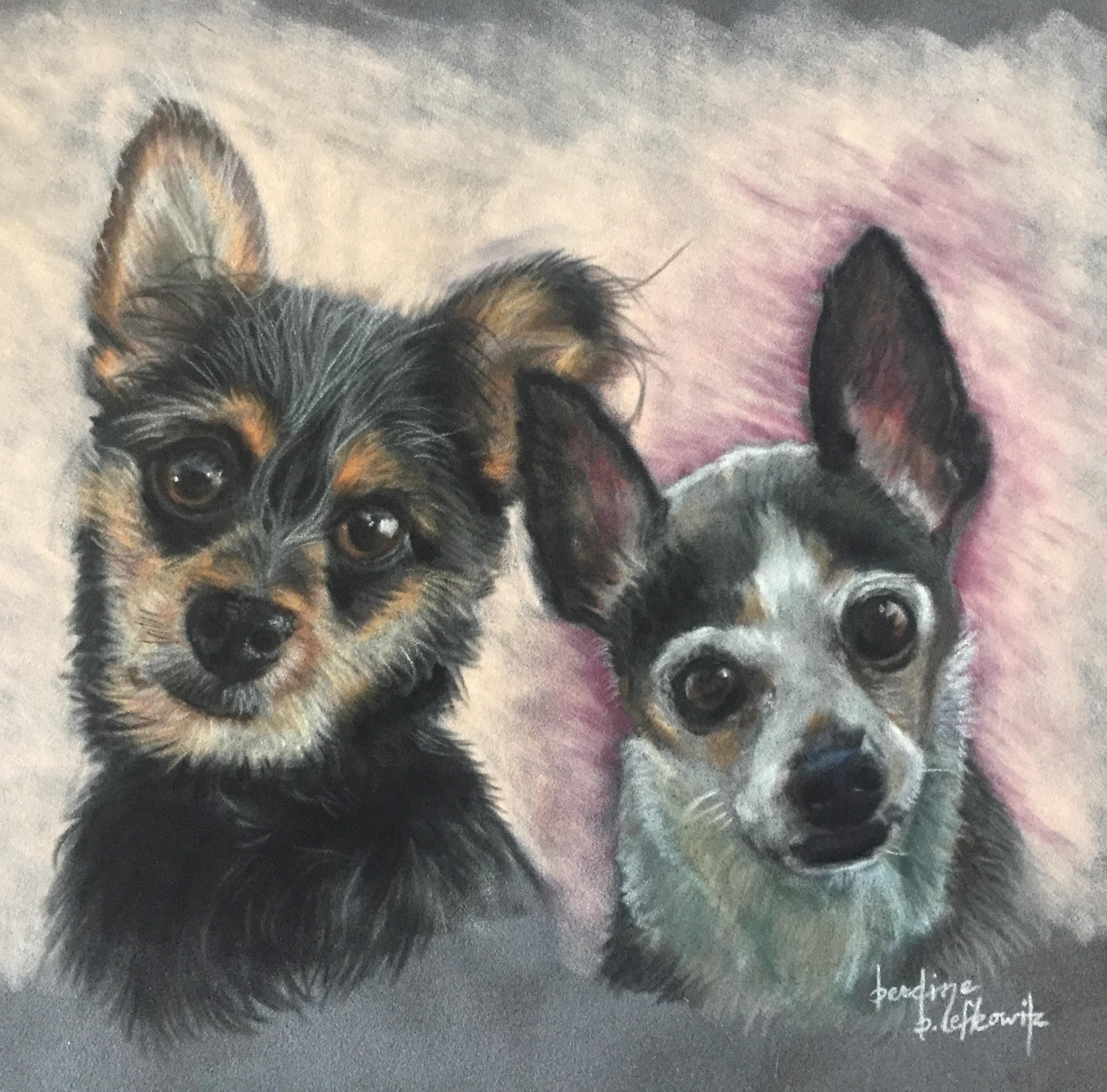Gizmo & Angel
