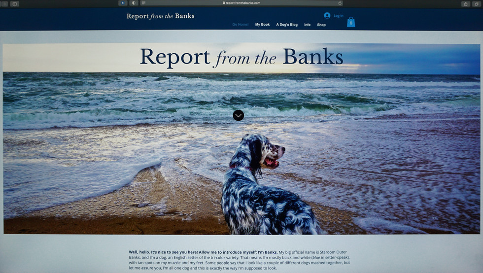 Report from the Banks