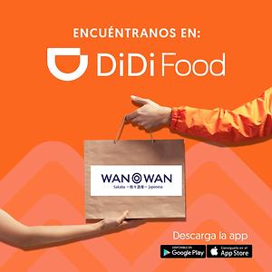 DiDI wan wan.PNG