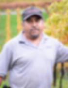 Heriberto Huerta, Wise Villa Winery