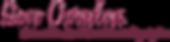 SOS breast cancer organization logo.png