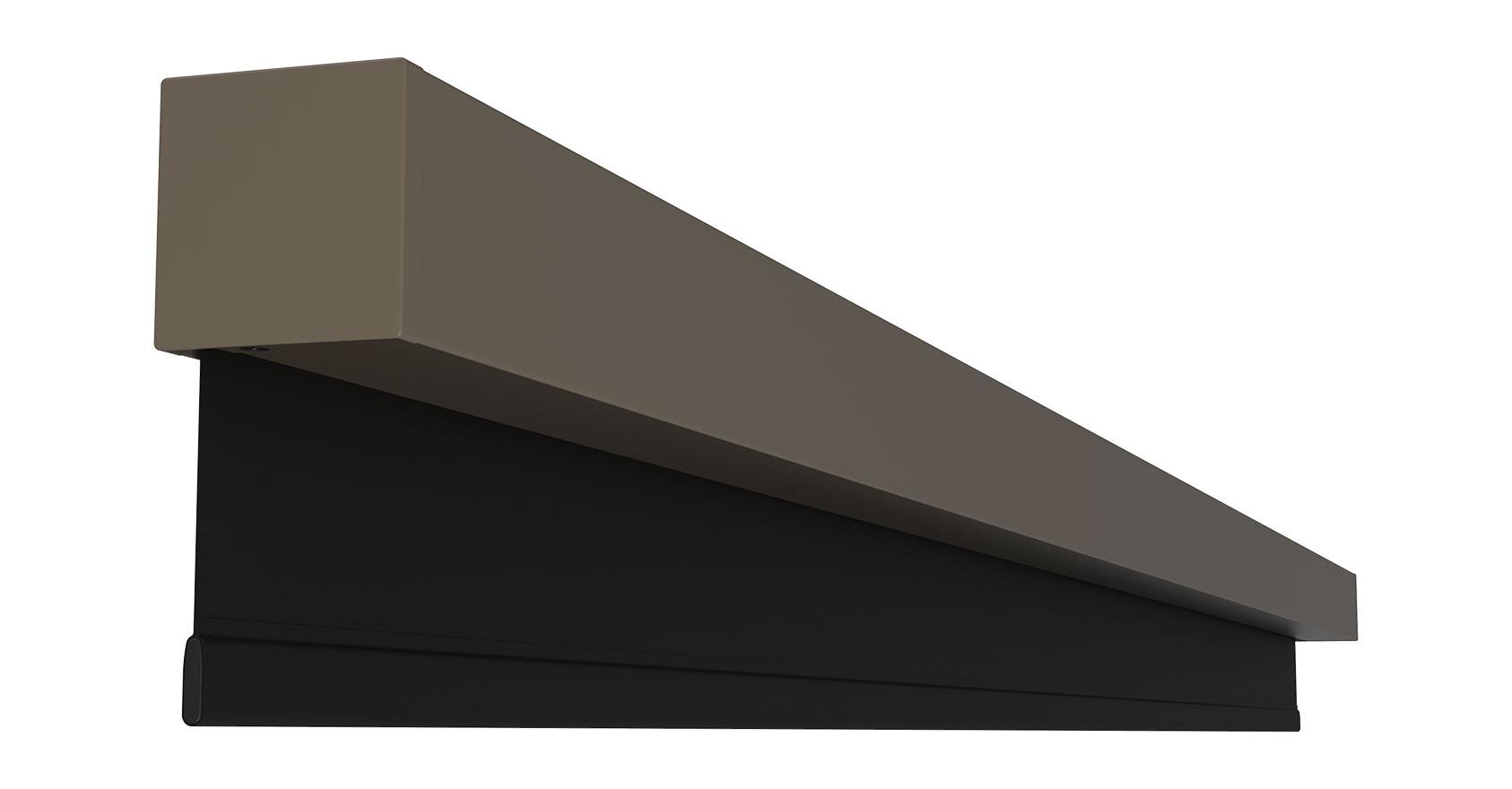 Nano Box Fossil