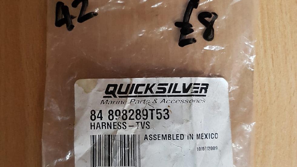 Quicksilver Harness - TVS 84 898289T53