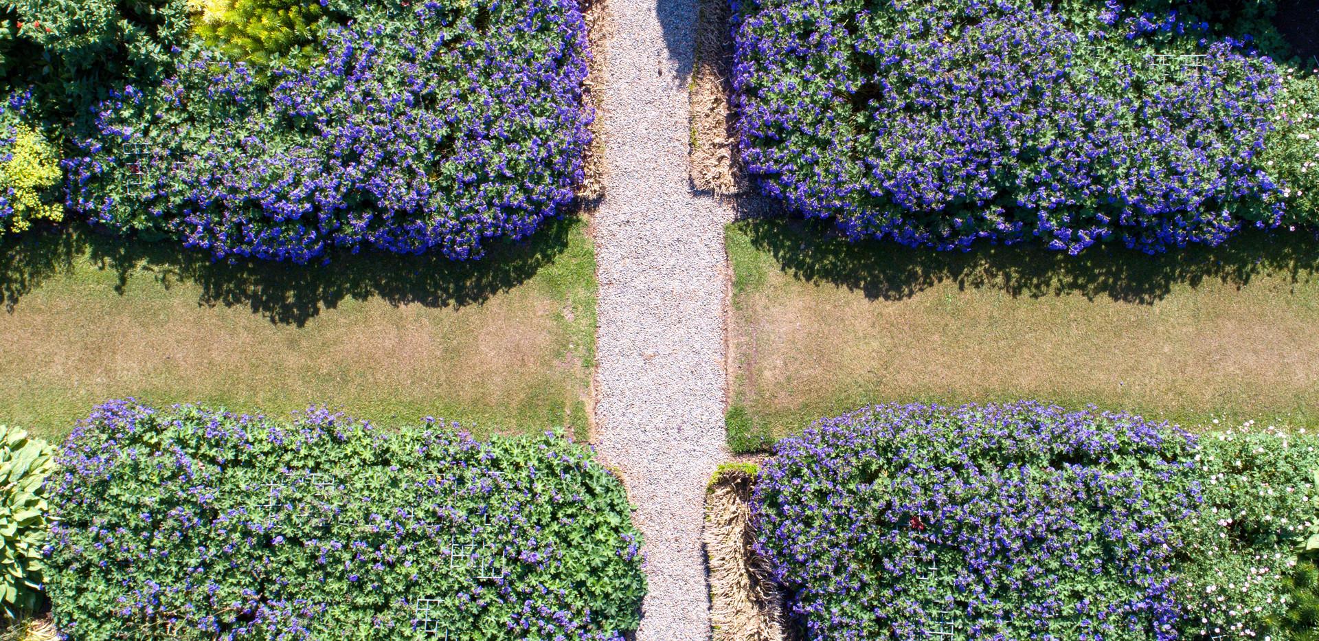 Newtonmill House Garden-9.jpg
