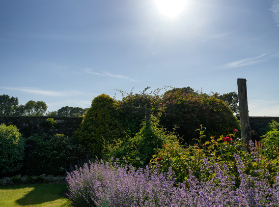 Newtonmill House Garden-69.jpg