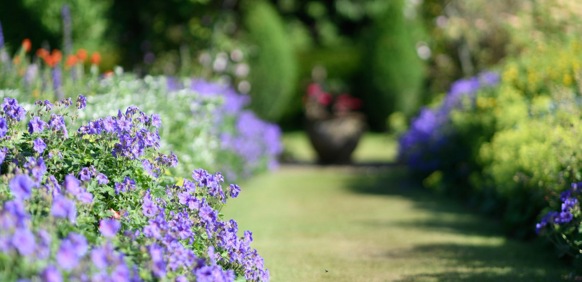 Newtonmill House Garden-27.jpg