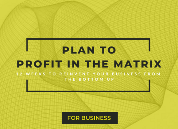 Plan to Profit in the Matrix | For Business