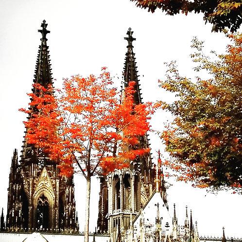 Kölner Dom mit Herbstbaum