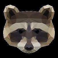 Geometric Racoon