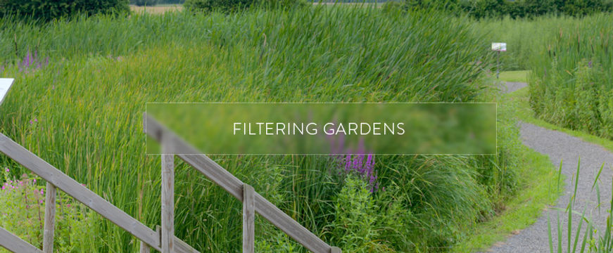 filtering-gardens-engaged-cosmetics.jpg