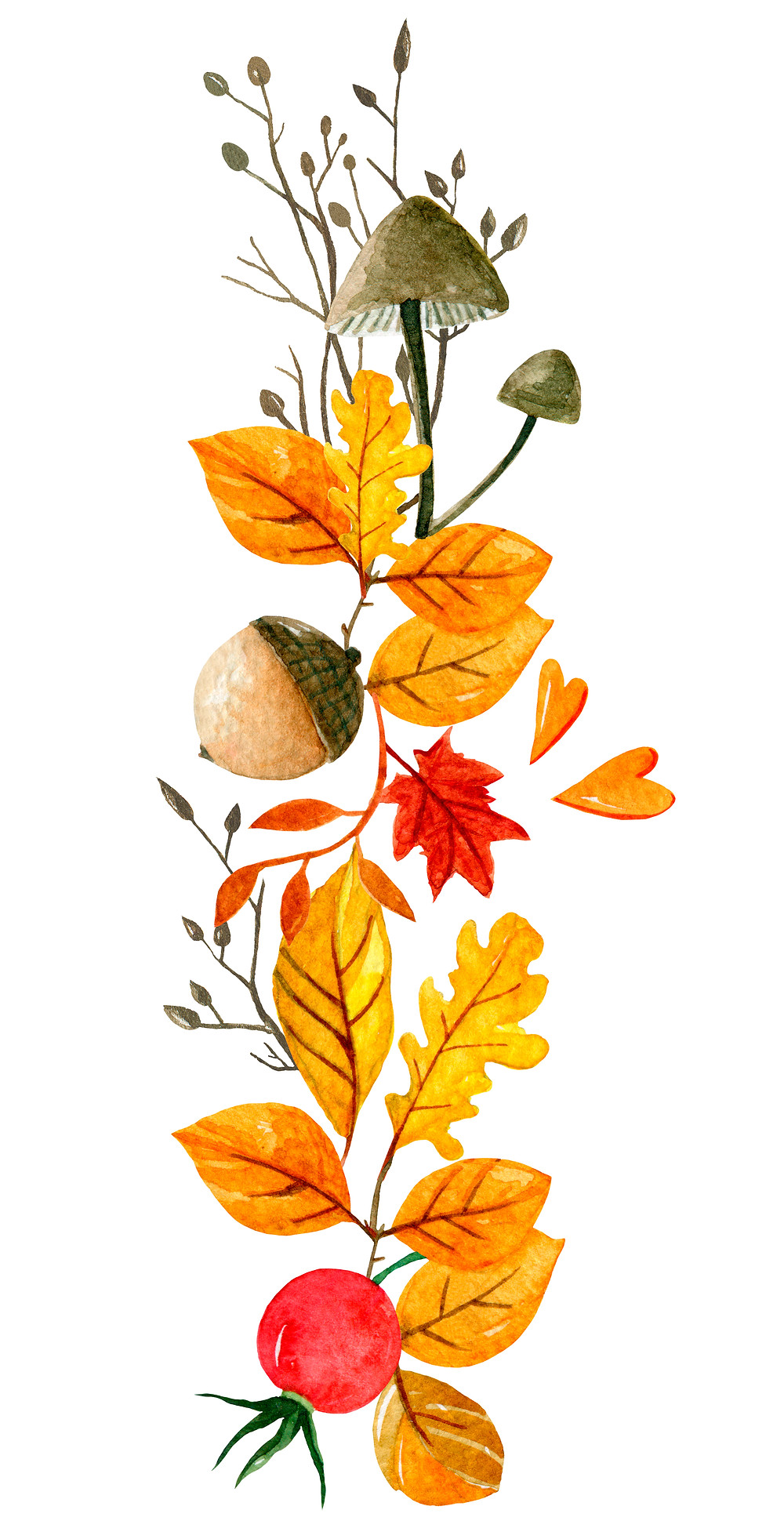 Fall scene with acorn and leaves