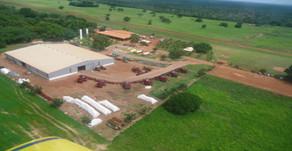 Agropecuária Itaquere entra em recuperação judicial