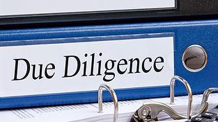 ddiligence (2)_edited.jpg