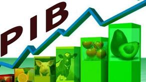 Itaú e Bradesco elevam projeções para o PIB